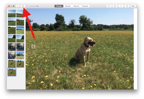 Use Split View for better browsing in the OS X Photos app